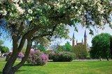 thumbnail - Blick auf die Schlosskirche Neustrelitz