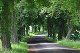 thumbnail - Unterwegs im Satower Land