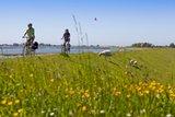 thumbnail - Beim Radfahren auf Fehmarn hat man das Wasser stets im Blick