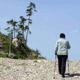 thumbnail - Alpiner Weg