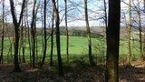 thumbnail - Blick auf die Wiese mit Borkebach