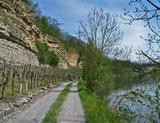 thumbnail - Prallhang am Neckar