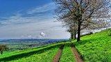thumbnail - Aussicht vom Altenberg