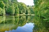 thumbnail - Karlsbergweiher im Waldpark Schloss Karlsberg - ein Garten mit Geschichte