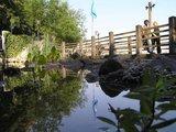 thumbnail - Gestaltetes Uferbiotop an der Promenade