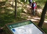 thumbnail - Infotafel an der slawischen Höhenburg