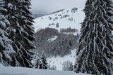thumbnail - Blick auf den Sittnerberg