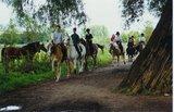 thumbnail - Ausritt der Bonanza-Ranch