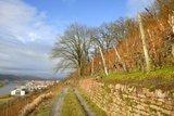 thumbnail - Mittlerer Weinbergsweg