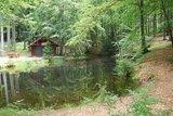 thumbnail - Waldhütte am Klingelfloss