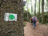 thumbnail - Auf dem Karstkundlichen Wanderpfad