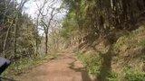 thumbnail - Waldweg im Rurtal