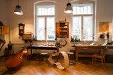 thumbnail - Erlebniswerkstatt Cello u. Kontrabass