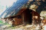 thumbnail - Archäologisches Zentrum Hitzacker Langhaus