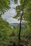 thumbnail - Panoramablick in Sayntal