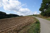 thumbnail - Zwischen Wiesen und Feldern geht es hinab in Richtung Ihne