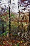 thumbnail - Weg Kappelberg im Herbst