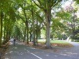 thumbnail - Promenade in Münster