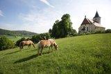 thumbnail - Kirche in Bühl