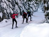 thumbnail - Langlaufloipe Rueckershausen Skating