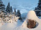thumbnail - Schneemänchen am Wegesrand