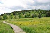 thumbnail - Blick zur Sommerrodelbahn