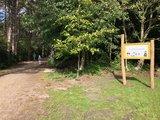thumbnail - Eingang zum Sylter Sagenwald
