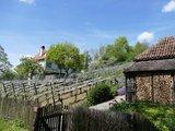 thumbnail - Rebgarten am Rauenegg