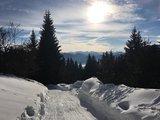 thumbnail - Blick von der Denkalm im Winter