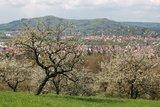 thumbnail - Blick von Ellenbach auf Hersbruck