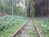 thumbnail - Schienen der Buchhorster Waldbahn