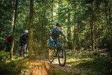 thumbnail - Schönblick-Trail