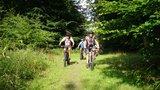 thumbnail - Auffahrt zum Drachenberg