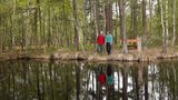 thumbnail - Wanderer am Moorsee im Großen Ribnitzer Moor