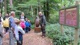 thumbnail - Auf dem Walderlebnispfad Dargun gehen Familien auf Spurensuche