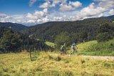 thumbnail - Ausfahrt Todtmoos Trail Copyright: Hochschwarzwald Tourismus GmbH