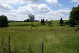 thumbnail - Wiesen und Weiden entlang des (Spazier-)Wanderweges