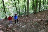 thumbnail - steile Hänge im Warnow-Durchbruchstal