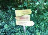 thumbnail - Kirschenweg