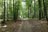 thumbnail - Radtour zum Kloster Weltenburg