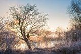 thumbnail - Winterliche Landschaft