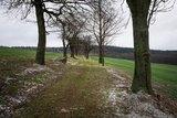 thumbnail - Lindenweg (Winterwanderroute Mit Hunger zum Unger Nr. 29)