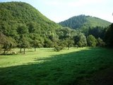 thumbnail - Streuobstwiese im Baybachtal