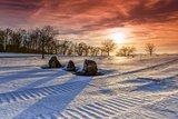 thumbnail - Ehemaliger Truppenübungsplatz im Winter