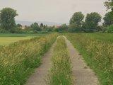 thumbnail - Anstelle Mittelleitplanken ==> Grasleitplanken