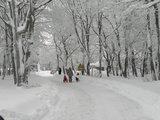 thumbnail - Weg hinauf zur Nordhelle