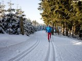 thumbnail - Loipe im Skilanglaufzentrum Westfeld