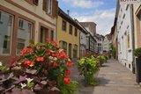 thumbnail - Gasse Altstadt