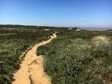 thumbnail - Wanderweg am Morsum-Kliff