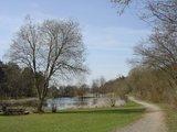 thumbnail - Seewoog in Miesenbach